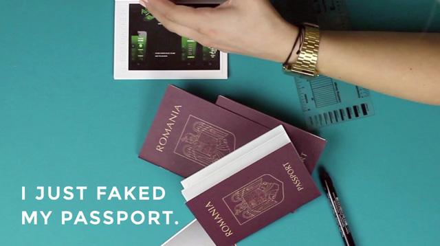 CV Faux Passeport