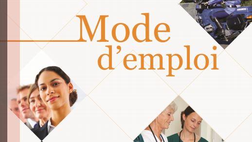 travailler dans la fonction publique un guide gratuit t l charger mode s d 39 emploi. Black Bedroom Furniture Sets. Home Design Ideas