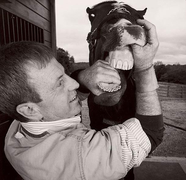 Et ce monsieur soigne les dents des chevaux