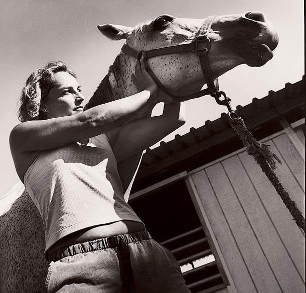 Les chevaux aussi ont parfois besoin d'un masseur
