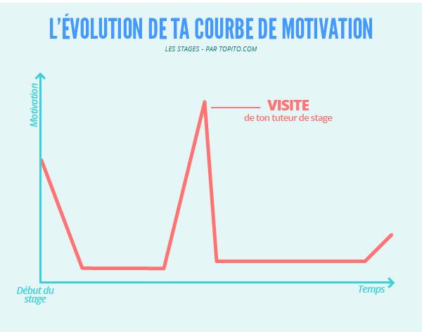 Infographie_stage_Plan-de-travail-8